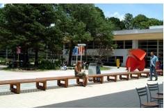 Campus Santo Amaro - Área de convivência