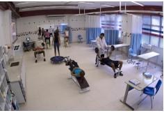 Laboratório de saúde.