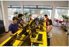 Centro Centro Universitário Fundação de Ensino Octávio Bastos - UNIFEOB São Paulo Foto